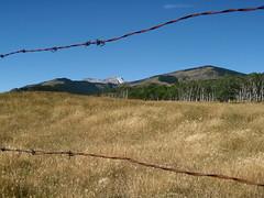 P9040096 (Mr. Happy Face - Peace :)) Tags: canada nature beautiful landscape kananaskis wire country rusty explore alberta grassland