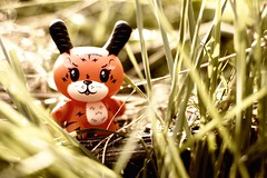 Dunny #2 - Jungle Tiger (Mark Williams Photography) Tags: toy 50mm f14 tiger vinyl ken kidrobot jungle figure mysterious dunny 2011