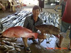 20090706 (fymac@live.com) Tags: mackerel fishing redsnapper shimano pancing angling daiwa tenggiri sarawaktourism sarawakfishing malaysiafishing borneotour malaysiaangling jiggingmaster