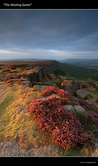 """The Waiting Game"" 