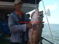 201003013 (fymac@live.com) Tags: mackerel fishing redsnapper shimano pancing angling daiwa tenggiri sarawaktourism sarawakfishing malaysiafishing borneotour malaysiaangling jiggingmaster