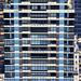 Chameleon Building