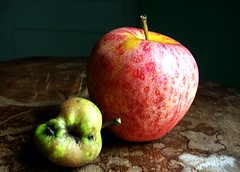 rotten (Amelia O. Morgan) Tags: new wood old red green texture nature yellow table death apples alive rotten rebirth