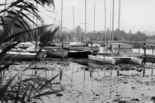 lago di fimon3
