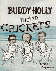 01 - Buddy Holly & The Crickets