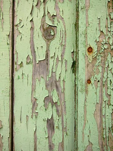 French Old Peeling Paint Wall by Danalynn C