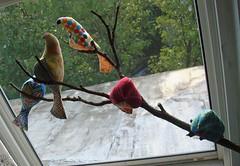 Jenne bird branch 2