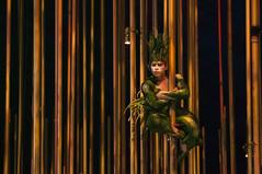 Cirque Du Soleil - Varekai (Levi Bianco) Tags: nikon sopaulo sp cirquedusoleil pauta 2011 d90 parquevilalobos newsfree verakai levibianco