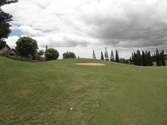 WAIKELE COUNTRY CLUB 237