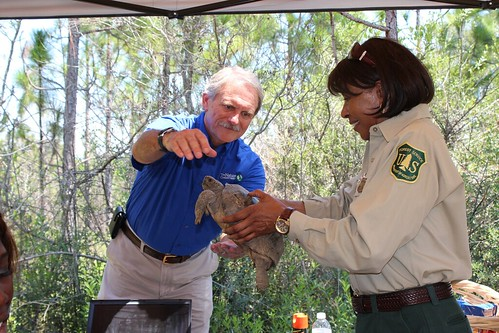 USFS State Forest Supervisor Gretta Boley passes a gopher tortoise to Jim Murrian, state director of The Nature Conservancy.