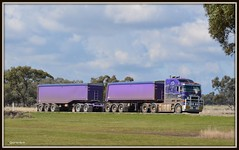 Pascoes Road Train (quarterdeck888) Tags: trucks roadtrain kenworth tippers jerilderie pascoes k108 bigcab worldtruck