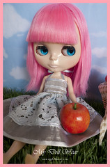 Blythe Outfit - Picnic day!