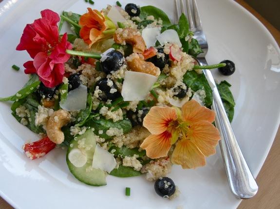 nasturtium quinoa salad 001