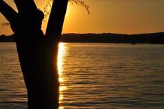 397 (maryk143) Tags: sunset sunsetatthelake romanticsunset