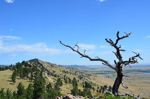 Colorado 2011 014