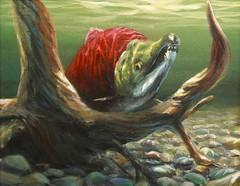 """Ol' Snaggle Tooth"" Sockeye Salmon Painting by Karen Whitworth (Karen_Whitworth) Tags: red fish art alaska river painting print stream artist underwater salmon sockeye giclee whitworthgallery karenwhitworth"
