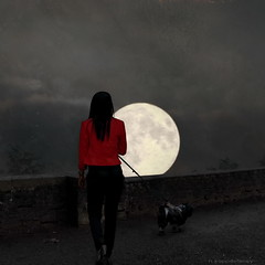 Lady Luna (h.koppdelaney) Tags: life light red woman dog moon art digital photoshop walking symbol walk picture philosophy luna full metaphor psyche symbolism psychology archetype idream absoluterouge koppdelaney truthandillusion flickrstruereflection1