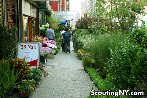 The Jungles of West 28th Street – Exploring New York\'s Flower ...