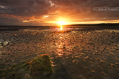 Budle Bay Sunrise by jimmypop68