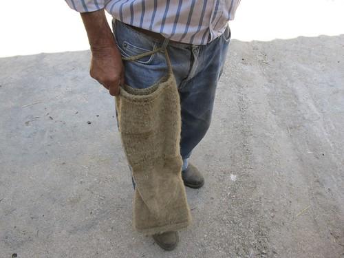 as meias das pernas
