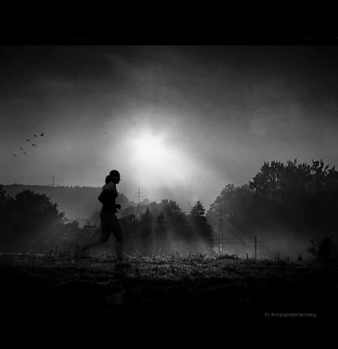 Jogging in Morning Light by h.koppdelaney, on Flickr