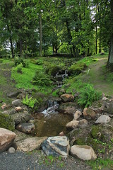 A Stream of Life (Hrjapealane) Tags: world park summer sky nature japan cat garden estonia august palace eesti suvi kadriorg maailm vabaduselaul