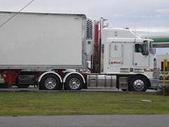 Churchill Kenworth K108 Stretch Cab (KW BOY) Tags: tractor truck prime big cab transport over australian melbourne stretch semi truckstop lorry rig hauling churchill express trailer bp coe mover trucking kw kenworth 2011 aerodyne k108