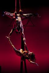 High Art (EIU) Tags: dance illinois theater performing arts aerial charleston acrobatics perform acrobats performers eastern highart rehearse eiu easternillinoisuniversity easternillinois doudna doudnafineartscenter jaygrabiec pendulumaerialarts