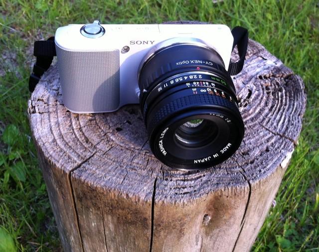 NEX-3 YASHICA ML 50mm F2.0 ホームフィールドにて
