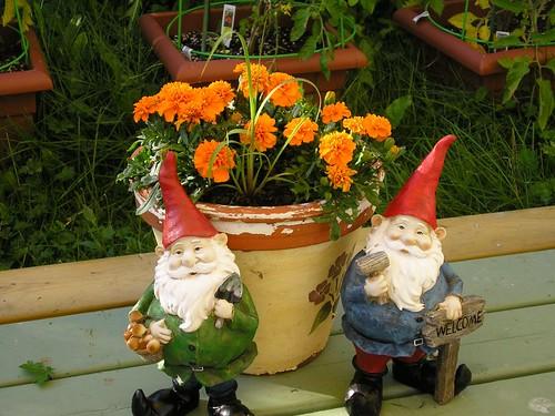 Garden Gnomes 1