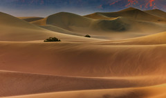 Death Valley. (coulombic) Tags: california mamiya sand desert dunes filter deathvalley sanddune sanddunes mamiya645 deathvalleynationalpark phaseone 80mp singhray gabefarnsworth deathvalleysanddunes coulombic 645df mamiya645df photocontesttnc11 phaseone75150mmf45d leafaptusii12