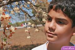 Ensaio Alexandre (Carol Maic | fotografia) Tags: braslia ensaio infantil fotogrfico