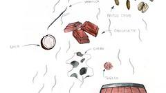 La madera redondea al vino