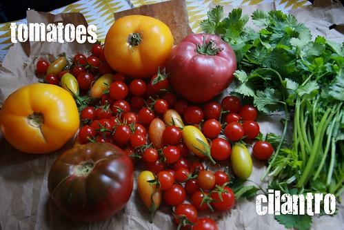 tomato loot