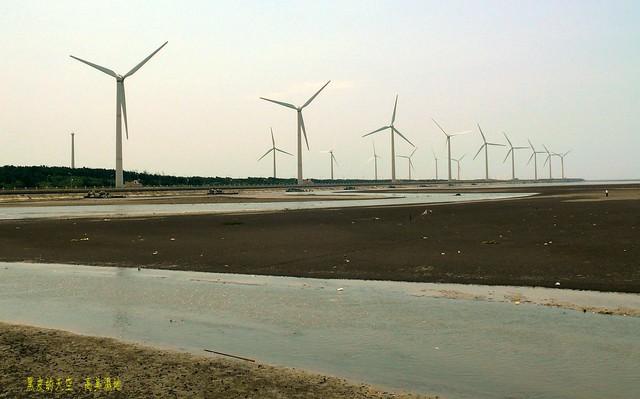 2011 0725清水高美濕地001