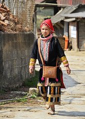 80_LAO75290103 (TC Yuen) Tags: vietnam sapa hmong terracefarming locai
