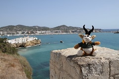 2011 aug 29 img_2440 (Dave Reinhardt) Tags: summer holiday spain ibiza teddybok