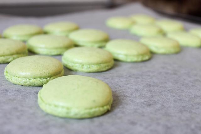grüne Macarons gebacken