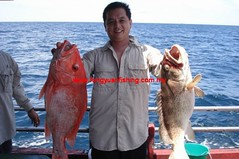 20100823 (fymac@live.com) Tags: mackerel fishing redsnapper shimano pancing angling daiwa tenggiri sarawaktourism sarawakfishing malaysiafishing borneotour malaysiaangling jiggingmaster