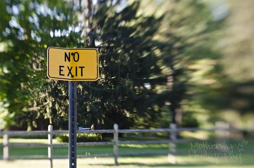 260:365 No exit