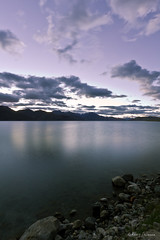 Pangong Tso at dawn