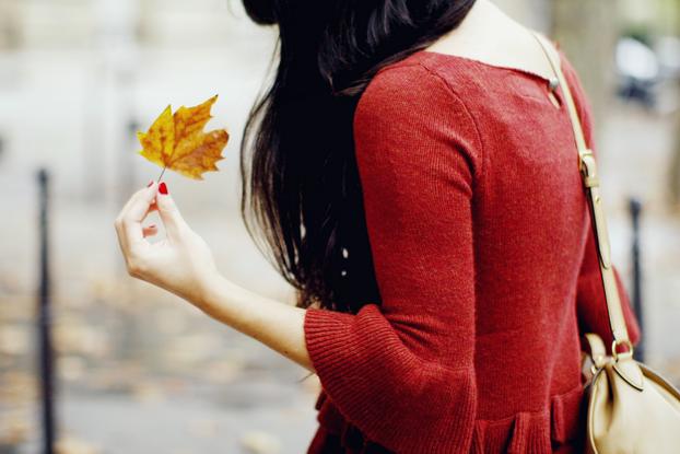 Autumn sweater 04