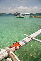 Coral Garden (B2Y4N) Tags: travel lake beach landscape island photography rocks cathedral twin lagoon whitesand coron palawan ecotourism busuanga