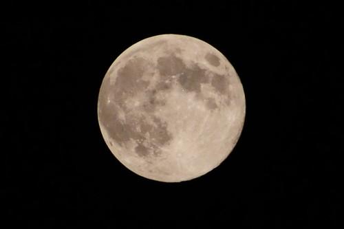 中秋の名月(2)