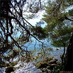 Natural Beauty - Croatia (AvQuu) Tags: trees sea nature alberi boat mar barca barco natureza croatia acqua rvores crocia idream anawesomeshot sognidreams absolutelyperrrfect mygearandme