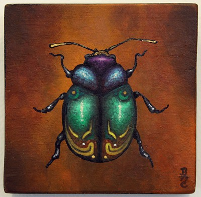 Small Beetle Painting