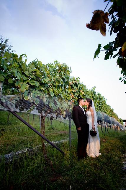 wedding prof. pics 700