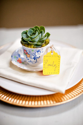 wedding succulents 8