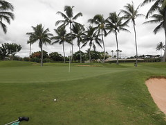 WAIKELE COUNTRY CLUB 121
