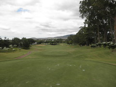 WAIKELE COUNTRY CLUB 156